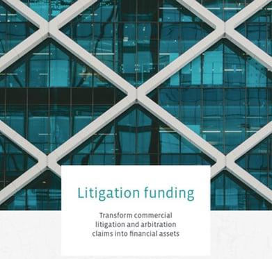 ebook-litigation-funding